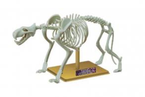 "Sciene Time Сборная модель ""Скелет Тигра"""